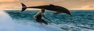 Il viaggio della vita: un delfino alla ricerca di se stesso