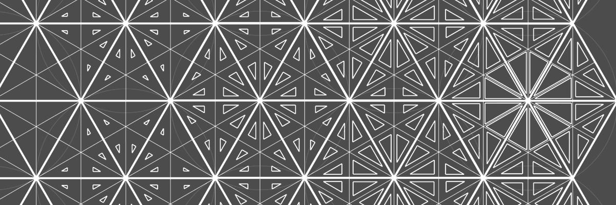 """Andrea Nardoni e Margherita Resti: due alunni del liceo """"Redi"""" di Arezzo spiegano come divertirsi con la geometria"""