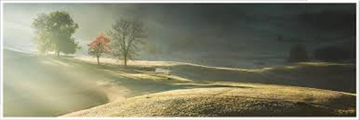 """D. Buzzati: """"Il segreto del bosco vecchio"""""""